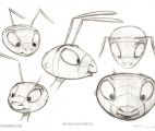 009_Ant-Male-Head-Profiles