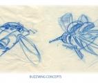 032_Buzzwings-Blueline-Rufs_02