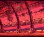 015_Barge-Metal-Hall