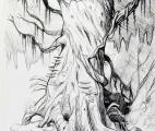 030_Old-Tree-on-Ledge