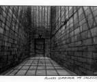 017_Access-Corridor-to-Cell