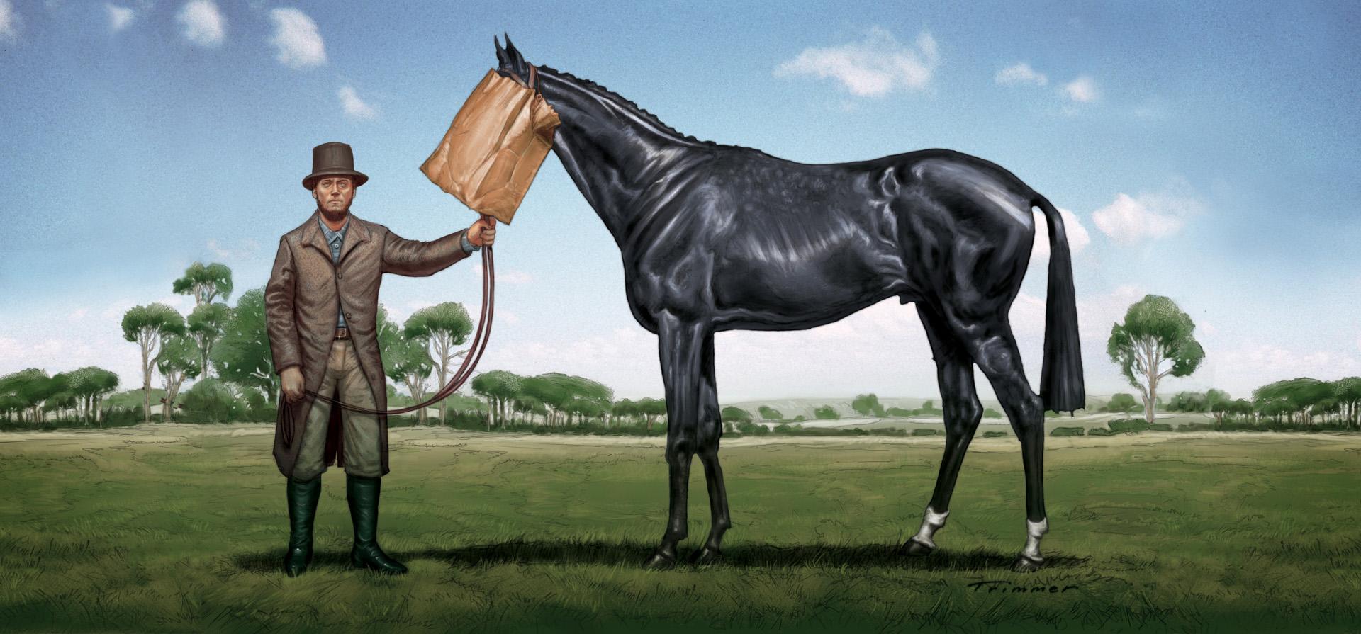 Front-Slide_Commercial-Illustration_Ugly-Horse_180dpi_04A