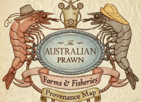 Australian Prawn Map